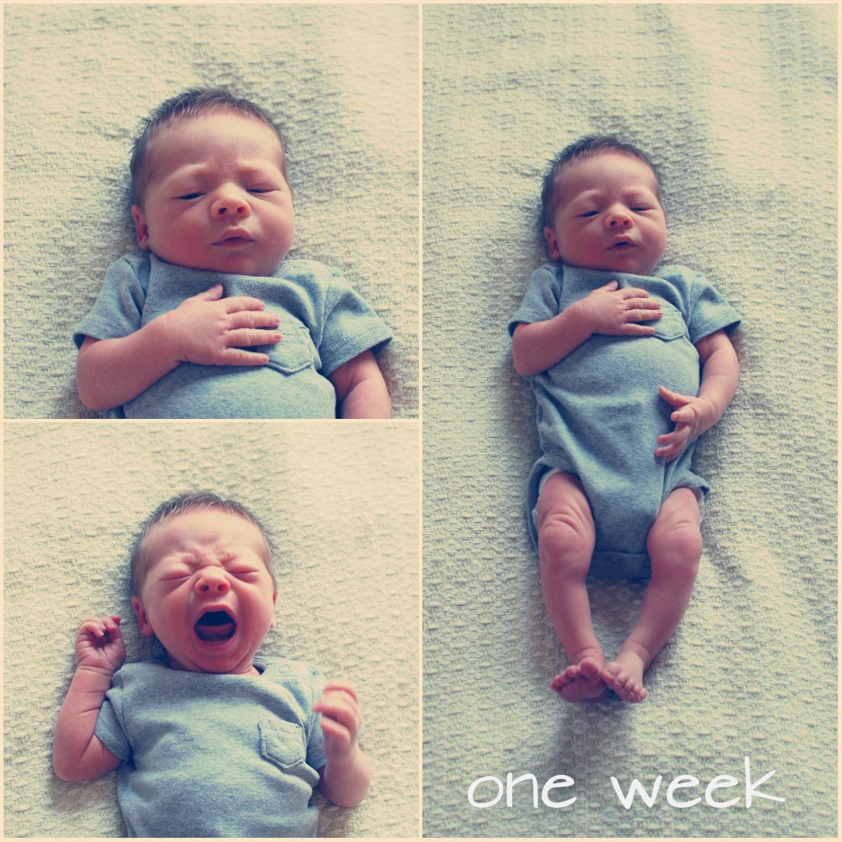 levi one week