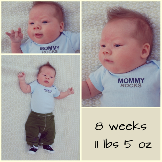 levi 8 weeks