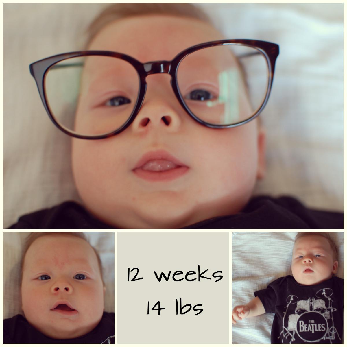 levi 12 weeks