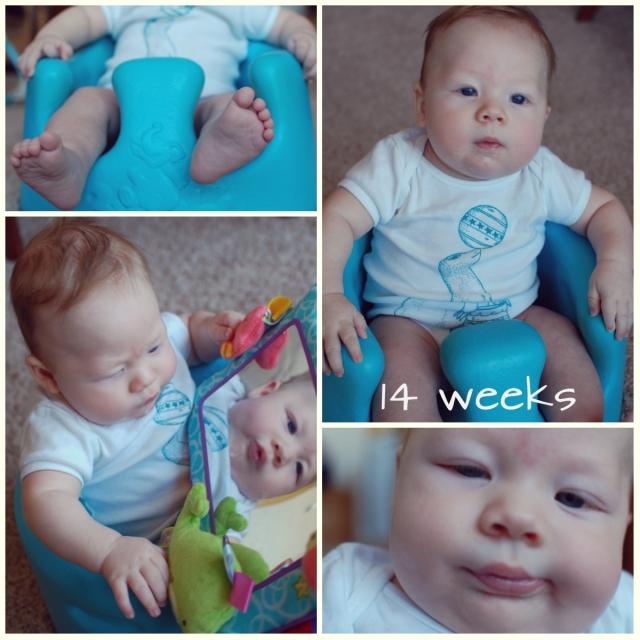 levi 14 weeks